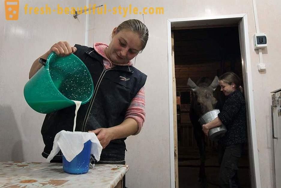Ekaterina, 59, Novorossiysk. Marina, 50, Novorossiysk.
